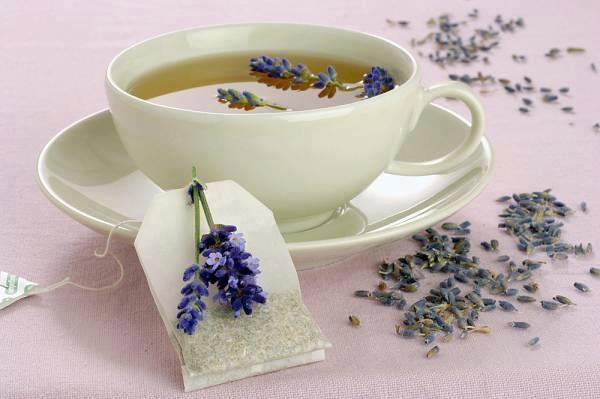 Green-tea-weight-loss-5